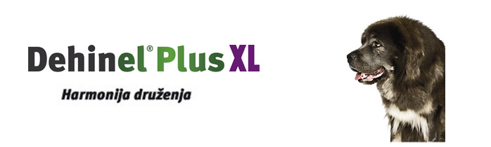 Dehinel® Plus XL